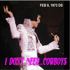 I Don't Need...Cowboys
